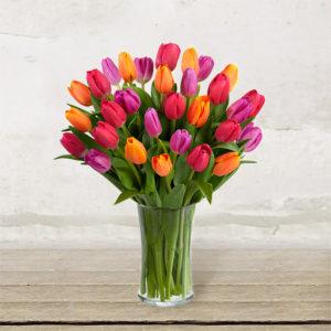 Coloured Tulips Bouquet