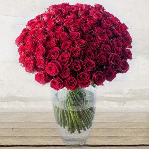"""Rose """"Red Naomi"""" Lunghissime Quantità Personalizzata"""