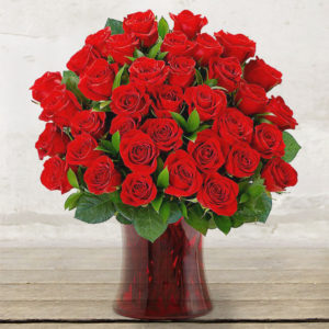 "Red Roses Long-stem ""Extra Quality"""